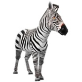 Papercraft model imprimible y armable de una Cebra / Zebra. Manualidades a Raudales.