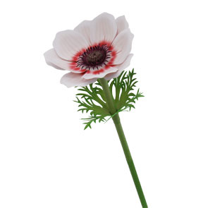 Paper model recortable de una flor la Anémona. Manualidades a Raudales.